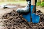 Shovel and Dirt